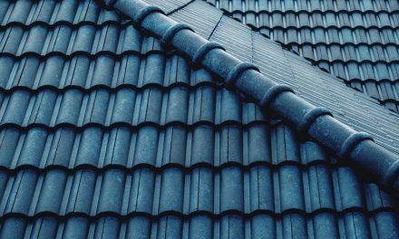 Farba na dach – jaki preparat wybrać i jak samodzielnie pomalować dach?